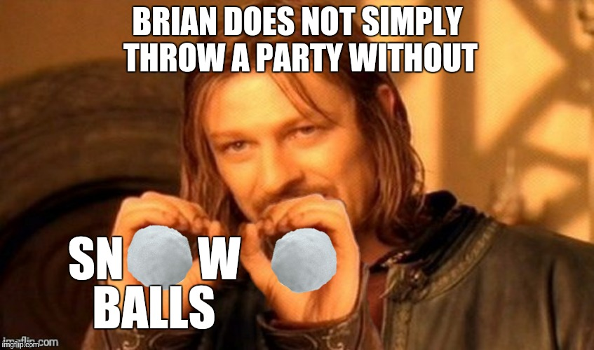BRIAN DOES NOT SIMPLY THROW A PARTY WITHOUT SN        W BALLS | made w/ Imgflip meme maker