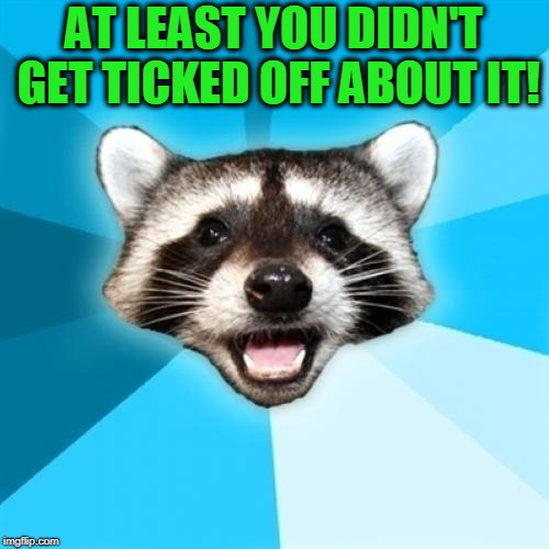 Lame Pun Coon Meme | AT LEAST YOU DIDN'T GET TICKED OFF ABOUT IT! | image tagged in memes,lame pun coon | made w/ Imgflip meme maker