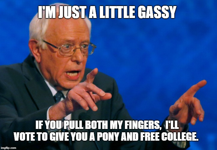 I'm just a little gassy. | I'M JUST A LITTLE GASSY IF YOU PULL BOTH MY FINGERS,  I'LL VOTE TO GIVE YOU A PONY AND FREE COLLEGE. | image tagged in bernie sanders,liberal logic,parenting,donald trump,pull my finger,conservatives | made w/ Imgflip meme maker