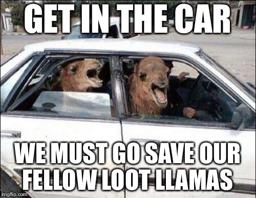 Quit Hatin | GET IN THE CAR WE MUST GO SAVE OUR FELLOW LOOT LLAMAS | image tagged in memes,quit hatin | made w/ Imgflip meme maker