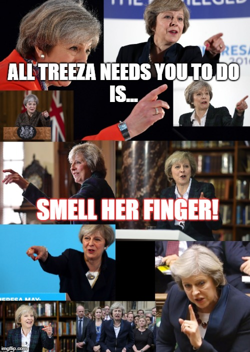 Theresa May's finger |  ALL TREEZA NEEDS YOU TO DO               IS... SMELL HER FINGER! | image tagged in theresa may,theresa may pointing,smell my finger,prime minister | made w/ Imgflip meme maker