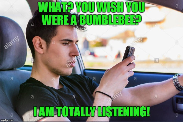 distracted | WHAT? YOU WISH YOU WERE A BUMBLEBEE? I AM TOTALLY LISTENING! | image tagged in distracted | made w/ Imgflip meme maker