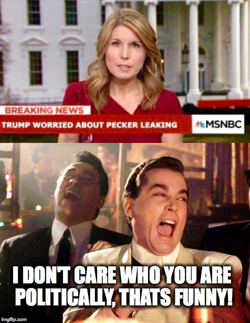 that headline will be memorable  | I DON'T CARE WHO YOU ARE POLITICALLY, THATS FUNNY! | image tagged in donald trump,weatherman penis fail,msnbc,laughing,fake news | made w/ Imgflip meme maker