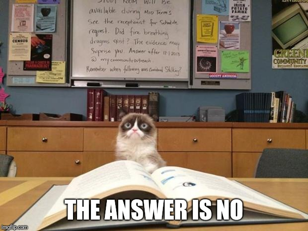 Grumpy cat studying | THE ANSWER IS NO | image tagged in grumpy cat studying | made w/ Imgflip meme maker