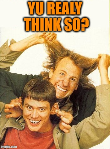 DUMB and dumber | YU REALY THINK SO? | image tagged in dumb and dumber | made w/ Imgflip meme maker