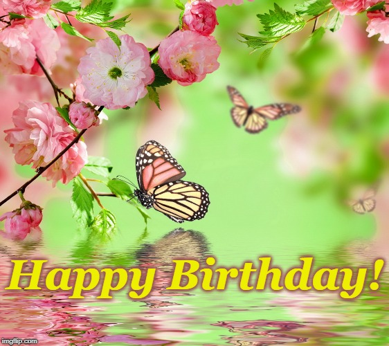 Image Tagged In Butterfly Kisses Imgflip Monarch butterfly happy birthday art birthday cards hero arts cards free stencils. image tagged in butterfly kisses imgflip