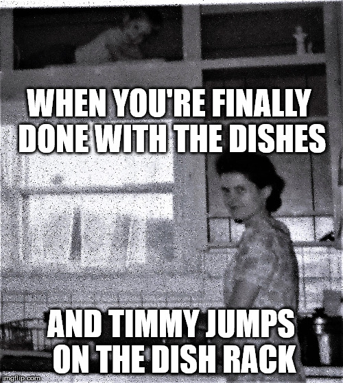 Self on the Shelf | WHEN YOU'RE FINALLY DONE WITH THE DISHES AND TIMMY JUMPS ON THE DISH RACK | image tagged in self on the shelf | made w/ Imgflip meme maker