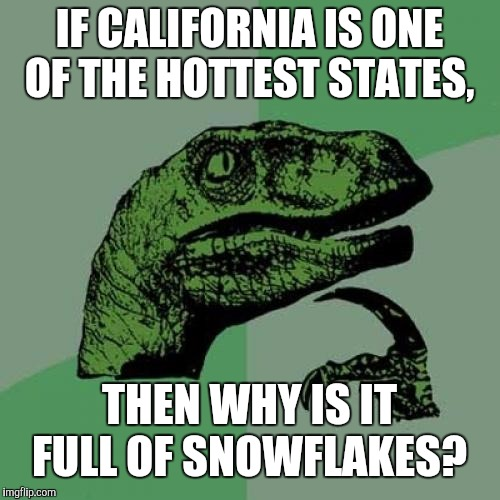 Do You Wanna Build A SnowPerson? | IF CALIFORNIA IS ONE OF THE HOTTEST STATES, THEN WHY IS IT FULL OF SNOWFLAKES? | image tagged in memes,philosoraptor,snowflakes,liberals,snowperson | made w/ Imgflip meme maker