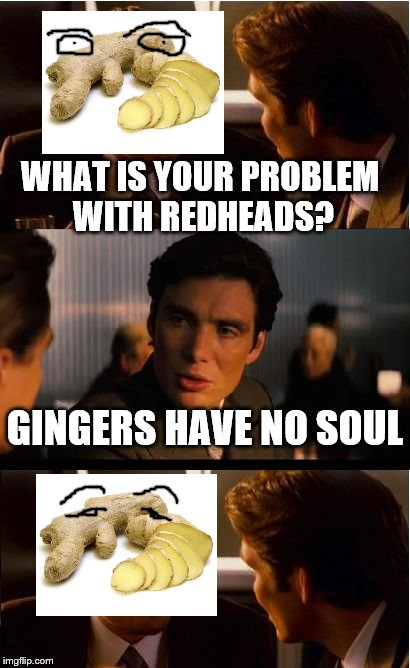 Mean to Ginger | WHAT IS YOUR PROBLEM WITH REDHEADS? GINGERS HAVE NO SOUL | image tagged in ginger,redheads,funny | made w/ Imgflip meme maker
