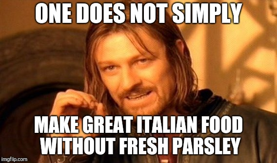 It's true |  ONE DOES NOT SIMPLY; MAKE GREAT ITALIAN FOOD WITHOUT FRESH PARSLEY | image tagged in memes,one does not simply | made w/ Imgflip meme maker