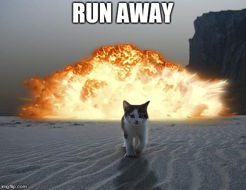 disaster girls cat  | RUN AWAY | image tagged in cat explosion,funny | made w/ Imgflip meme maker