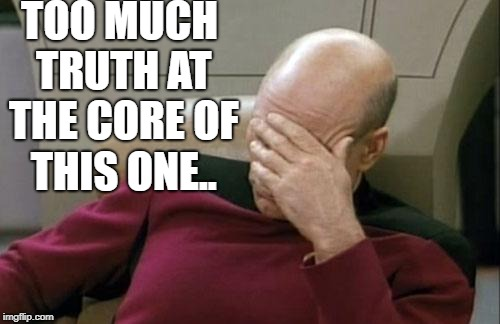 Captain Picard Facepalm Meme | TOO MUCH TRUTH AT THE CORE OF THIS ONE.. | image tagged in memes,captain picard facepalm | made w/ Imgflip meme maker