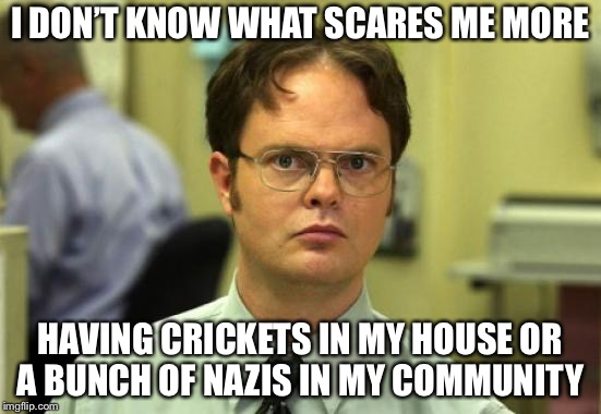 I rather have Nazis than crickets tbh | I DON'T KNOW WHAT SCARES ME MORE HAVING CRICKETS IN MY HOUSE OR A BUNCH OF NAZIS IN MY COMMUNITY | image tagged in memes,dwight schrute,nazis,crickets,idk | made w/ Imgflip meme maker