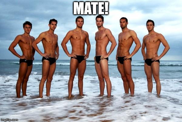 Hot Australian Swimming Team | MATE! | image tagged in hot australian swimming team | made w/ Imgflip meme maker