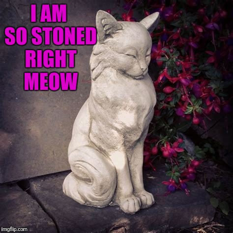 I AM SO STONED RIGHT MEOW | made w/ Imgflip meme maker
