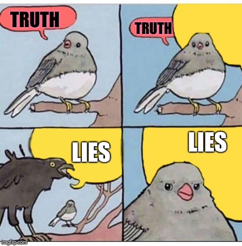 annoyed bird | TRUTH TRUTH LIES LIES | image tagged in annoyed bird | made w/ Imgflip meme maker
