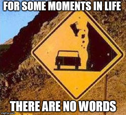 Falling Cows |  FOR SOME MOMENTS IN LIFE; THERE ARE NO WORDS | image tagged in falling cows | made w/ Imgflip meme maker