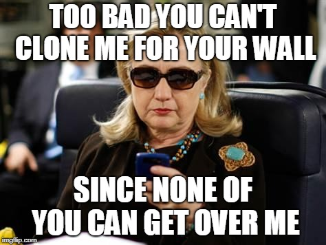 Hillary Clinton Cellphone | TOO BAD YOU CAN'T CLONE ME FOR YOUR WALL SINCE NONE OF YOU CAN GET OVER ME | image tagged in memes,hillary clinton cellphone | made w/ Imgflip meme maker