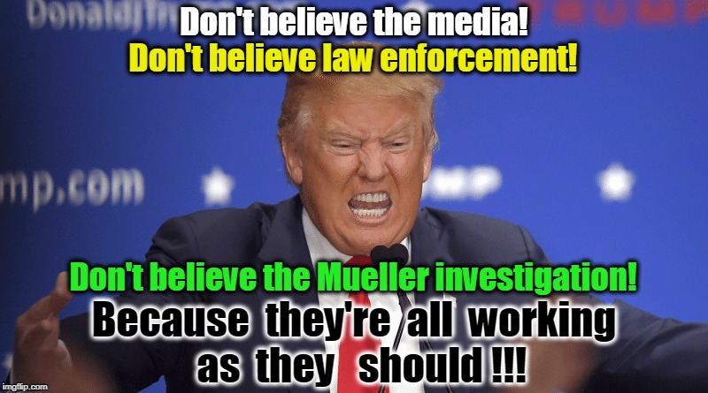 These are the checks and balances this insane career criminal fears. | Don't believe the media! Because  they're  all  working  as  they   should !!! Don't believe law enforcement! Don't believe the Mueller inve | image tagged in media,fake news,fbi,cia,mueller,doj | made w/ Imgflip meme maker