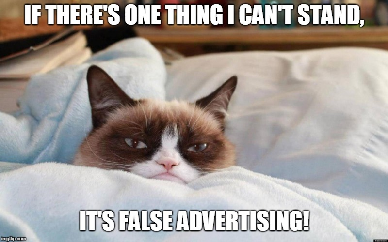 grumpy cat bed | IF THERE'S ONE THING I CAN'T STAND, IT'S FALSE ADVERTISING! | image tagged in grumpy cat bed | made w/ Imgflip meme maker