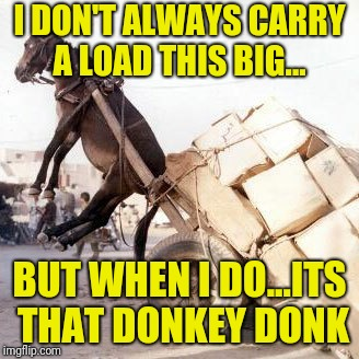 Donkey Donk | I DON'T ALWAYS CARRY A LOAD THIS BIG... BUT WHEN I DO...ITS THAT DONKEY DONK | image tagged in drunk,donkey | made w/ Imgflip meme maker