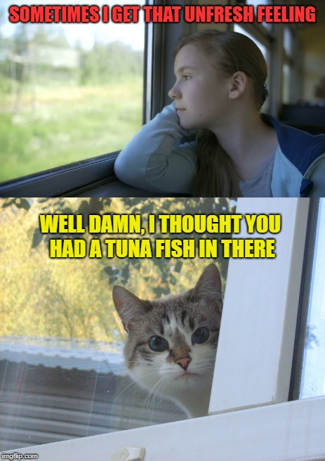 Summer's Eve |  SOMETIMES I GET THAT UNFRESH FEELING; WELL DAMN, I THOUGHT YOU HAD A TUNA FISH IN THERE | image tagged in funny memes,unclean,girl,funny cats | made w/ Imgflip meme maker