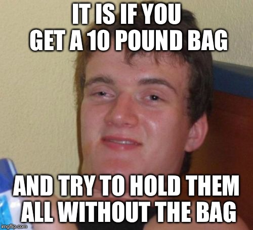10 Guy Meme | IT IS IF YOU GET A 10 POUND BAG AND TRY TO HOLD THEM ALL WITHOUT THE BAG | image tagged in memes,10 guy | made w/ Imgflip meme maker