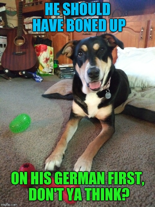 HE SHOULD HAVE BONED UP ON HIS GERMAN FIRST, DON'T YA THINK? | made w/ Imgflip meme maker