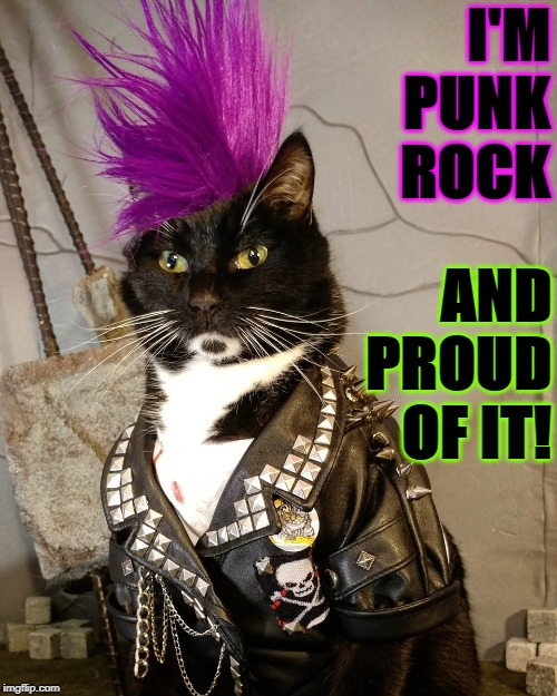 PUNK ROCK | I'M PUNK ROCK AND PROUD OF IT! | image tagged in punk rock | made w/ Imgflip meme maker