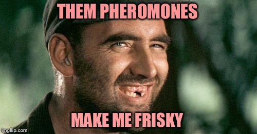 Deliverance HIllbilly | THEM PHEROMONES MAKE ME FRISKY | image tagged in deliverance hillbilly | made w/ Imgflip meme maker