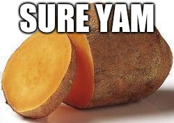 Yam | SURE YAM | image tagged in yam | made w/ Imgflip meme maker