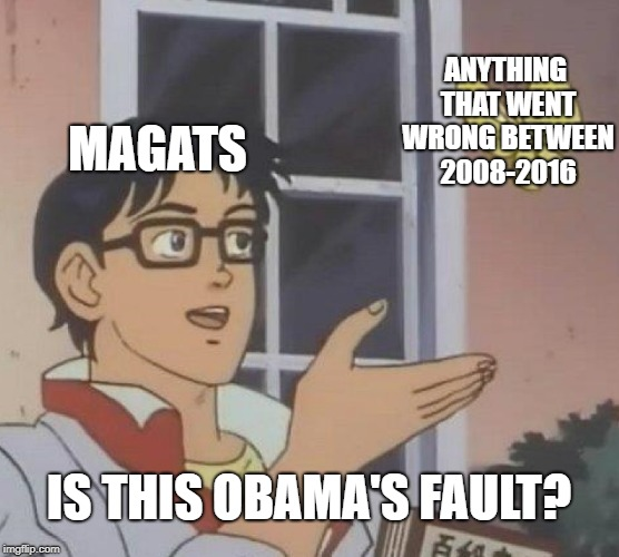 Is This A Pigeon Meme | MAGATS ANYTHING THAT WENT WRONG BETWEEN 2008-2016 IS THIS OBAMA'S FAULT? | image tagged in memes,is this a pigeon | made w/ Imgflip meme maker