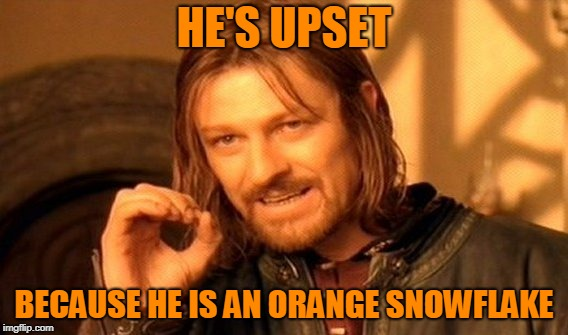 One Does Not Simply Meme | HE'S UPSET BECAUSE HE IS AN ORANGE SNOWFLAKE | image tagged in memes,one does not simply | made w/ Imgflip meme maker