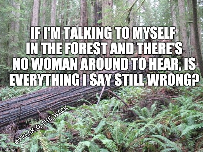 IF I'M TALKING TO MYSELF IN THE FOREST AND THERE'S NO WOMAN AROUND TO HEAR, IS EVERYTHING I SAY STILL WRONG? @FREAK_O_THE_WEEK | image tagged in forest | made w/ Imgflip meme maker