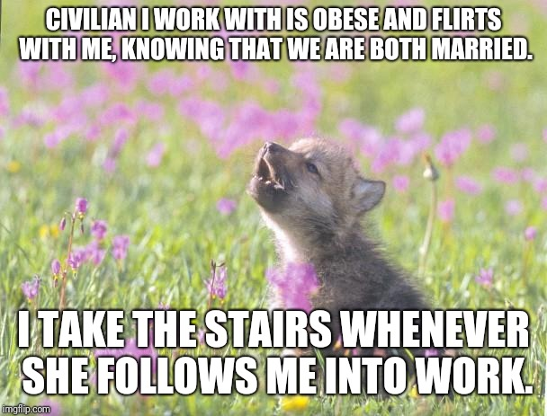 Baby Insanity Wolf |  CIVILIAN I WORK WITH IS OBESE AND FLIRTS WITH ME, KNOWING THAT WE ARE BOTH MARRIED. I TAKE THE STAIRS WHENEVER SHE FOLLOWS ME INTO WORK. | image tagged in memes,baby insanity wolf,AdviceAnimals | made w/ Imgflip meme maker