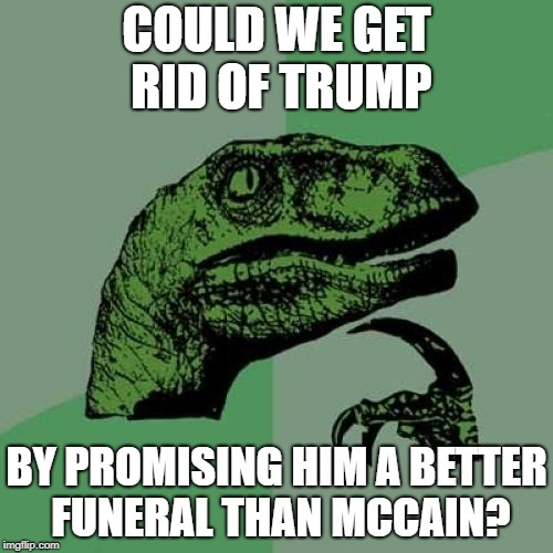 Philosoraptor Meme | COULD WE GET RID OF TRUMP BY PROMISING HIM A BETTER FUNERAL THAN MCCAIN? | image tagged in memes,philosoraptor | made w/ Imgflip meme maker
