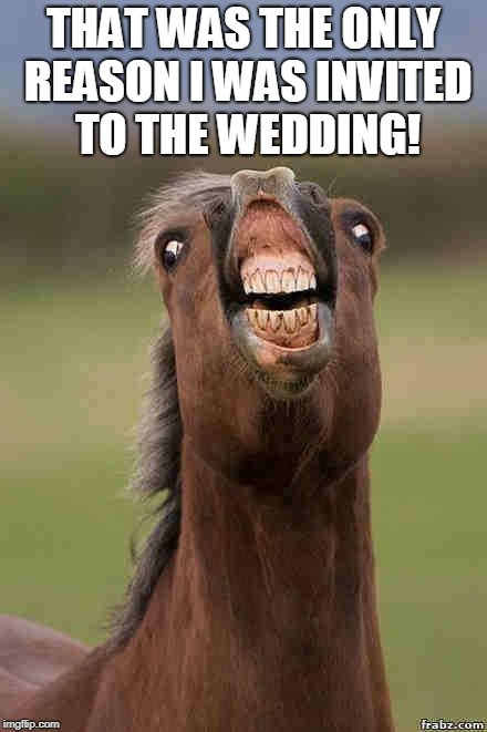 horse face | THAT WAS THE ONLY REASON I WAS INVITED TO THE WEDDING! | image tagged in horse face | made w/ Imgflip meme maker