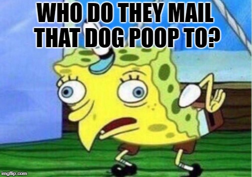 Mocking Spongebob Meme | WHO DO THEY MAIL THAT DOG POOP TO? | image tagged in memes,mocking spongebob | made w/ Imgflip meme maker