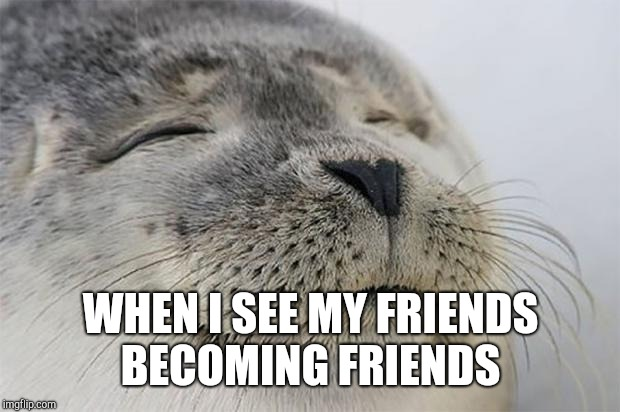 Satisfied Seal Meme | WHEN I SEE MY FRIENDS BECOMING FRIENDS | image tagged in memes,satisfied seal | made w/ Imgflip meme maker