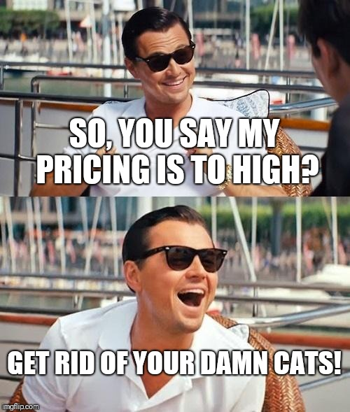 Leonardo Dicaprio Wolf Of Wall Street Meme | SO, YOU SAY MY PRICING IS TO HIGH? GET RID OF YOUR DAMN CATS! | image tagged in memes,leonardo dicaprio wolf of wall street | made w/ Imgflip meme maker