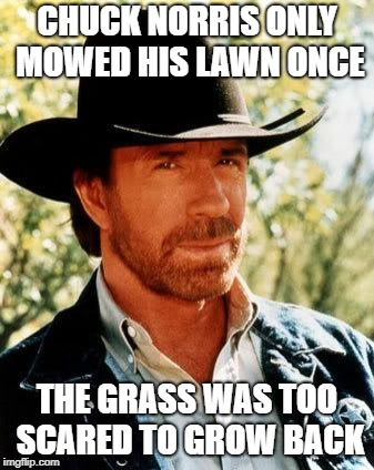 Chuck Norris Meme | CHUCK NORRIS ONLY MOWED HIS LAWN ONCE THE GRASS WAS TOO SCARED TO GROW BACK | image tagged in memes,chuck norris | made w/ Imgflip meme maker