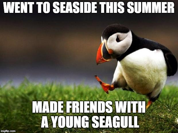 Just Shows How #ForeverAlone I Really Am. | WENT TO SEASIDE THIS SUMMER MADE FRIENDS WITH A YOUNG SEAGULL | image tagged in memes,unpopular opinion puffin,summer,latest | made w/ Imgflip meme maker