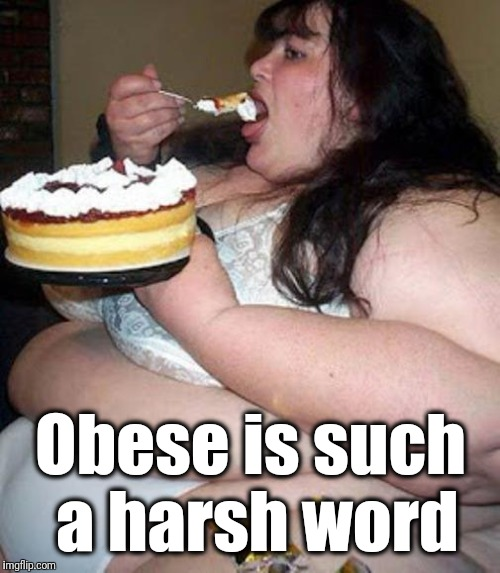Fat woman with cake | Obese is such a harsh word | image tagged in fat woman with cake | made w/ Imgflip meme maker