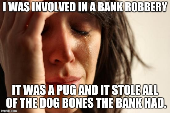 I WAS INVOLVED IN A BANK ROBBERY IT WAS A PUG AND IT STOLE ALL OF THE DOG BONES THE BANK HAD. | image tagged in memes,first world problems | made w/ Imgflip meme maker