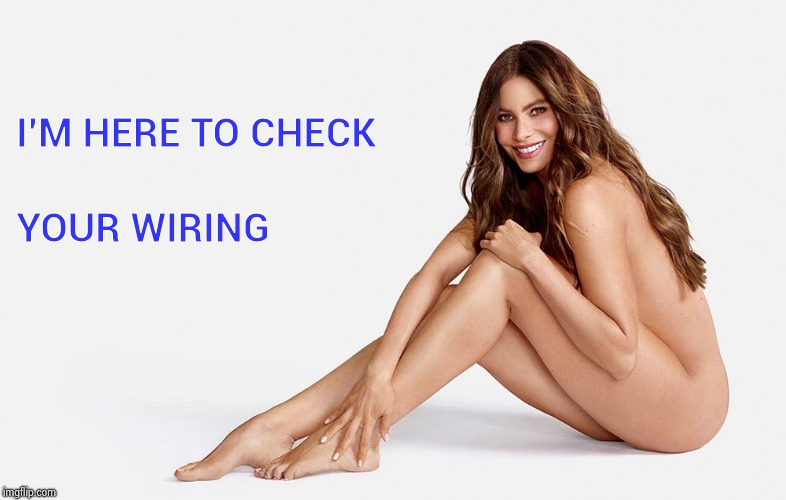 Sofia Vergara nude | I'M HERE TO CHECK YOUR WIRING | image tagged in sofia vergara nude | made w/ Imgflip meme maker