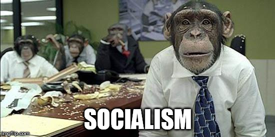 Office monkeys | SOCIALISM | image tagged in office monkeys | made w/ Imgflip meme maker