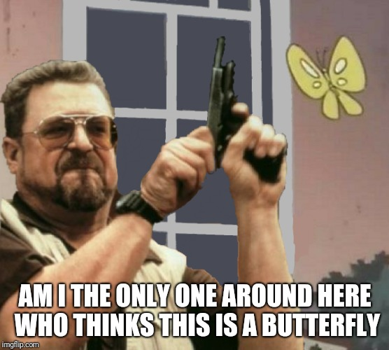 Maybe | AM I THE ONLY ONE AROUND HERE WHO THINKS THIS IS A BUTTERFLY | image tagged in memes,am i the only one around here,is this a pigeon,ilikepie314159265358979 | made w/ Imgflip meme maker