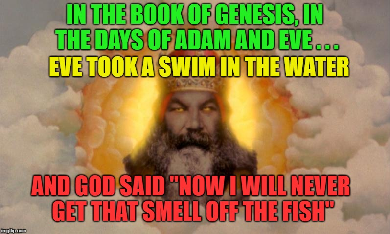 "Holy Moly | IN THE BOOK OF GENESIS, IN THE DAYS OF ADAM AND EVE . . . EVE TOOK A SWIM IN THE WATER AND GOD SAID ""NOW I WILL NEVER GET THAT SMELL OFF THE 