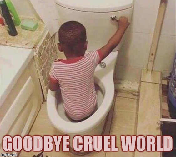 Going down the tubes. | GOODBYE CRUEL WORLD | image tagged in toilet,stuck,memes,funny | made w/ Imgflip meme maker