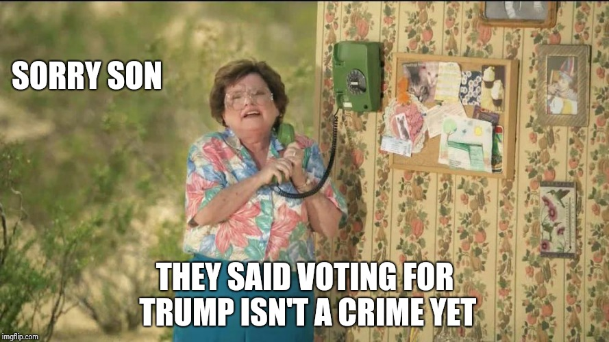 Something to remember this Election day | SORRY SON THEY SAID VOTING FOR TRUMP ISN'T A CRIME YET | image tagged in state farm old lady on the phone,democrats,neo-nazis,obey,die,dirty cops | made w/ Imgflip meme maker